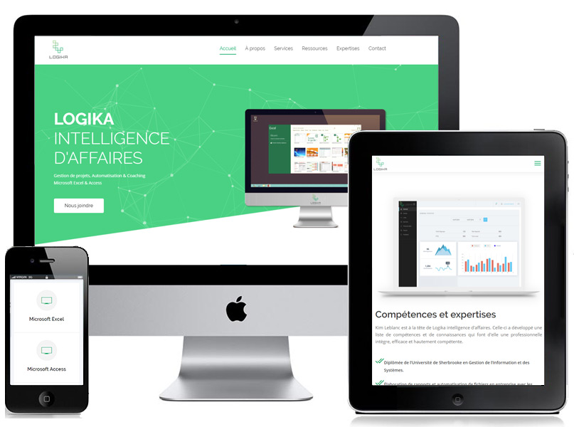 Logika intelligence d'affaire